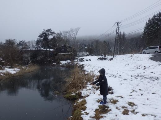 山梨県忍野 掛川 (19)