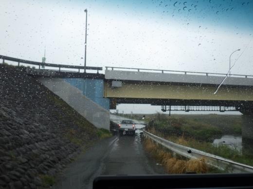 酒匂川 (11)