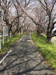 荒川サイクリングロード 田口不動産 2017