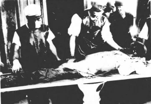 済南事件日本人惨殺遺体4