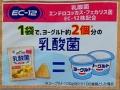 乳酸菌ポリンキー 発酵バター味_02