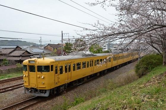 DSC_0806-桜と列車
