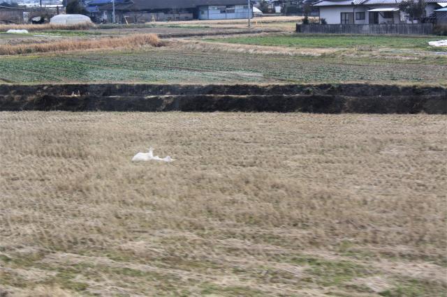 くま川57
