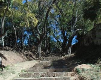 マダガスカル公園の通路1