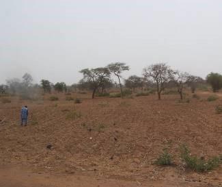 マリ国の土2