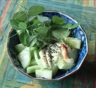 旬野菜料理豆苗
