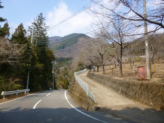 17_03_19-12brm319tsurutsurutsuru.jpg