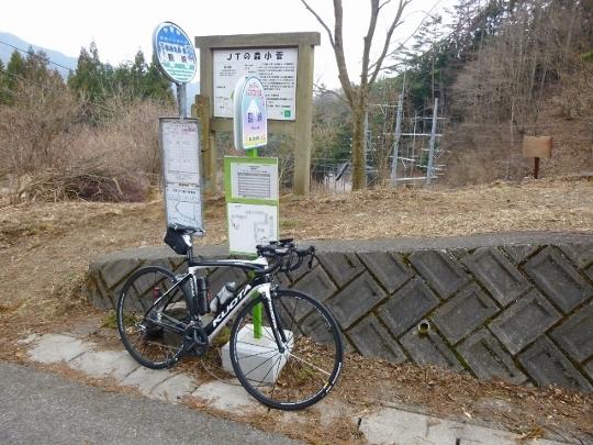 17_03_19-16brm319tsurutsurutsuru.jpg
