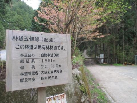 五條林道入り口