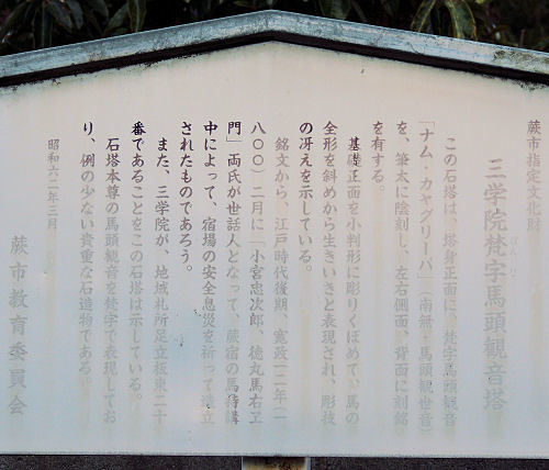 170218warabi29.jpg
