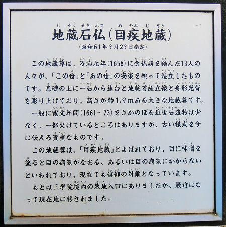 170218warabi33.jpg