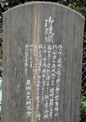 170218warabi56.jpg