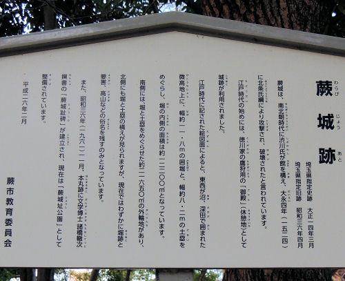 170218warabi61.jpg