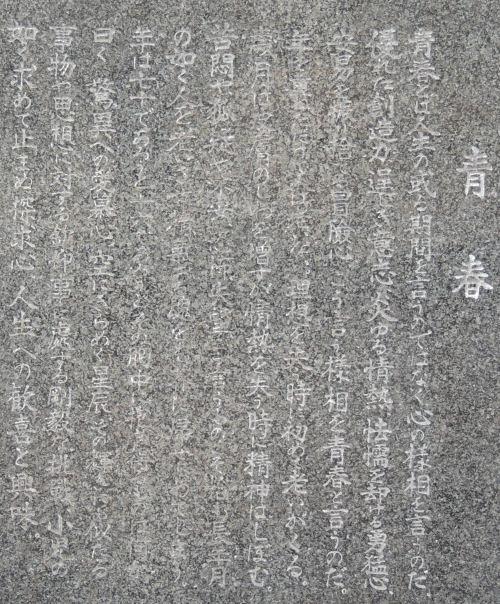 170218warabi64a.jpg