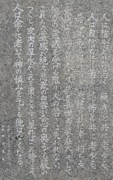170218warabi64b.jpg