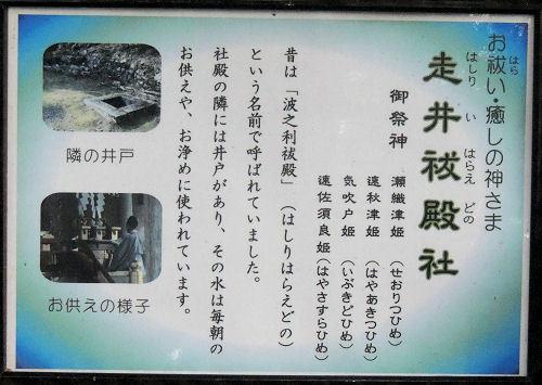 170327hiyoshi18.jpg