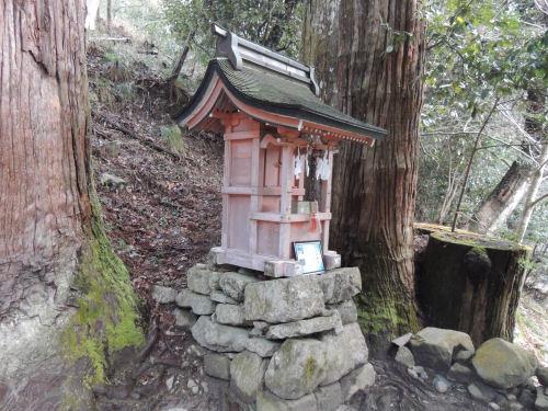 170327hiyoshi19.jpg