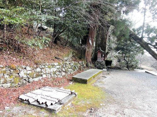 170327hiyoshi20.jpg