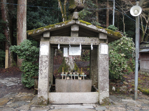 170327hiyoshi34.jpg