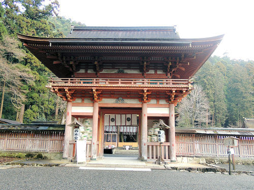 170327hiyoshi35.jpg