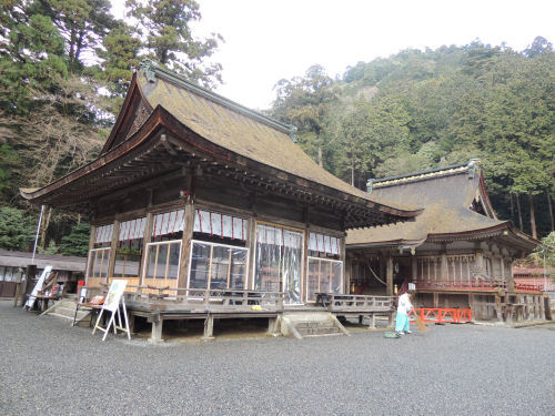 170327hiyoshi43.jpg