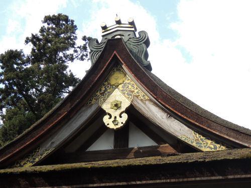 170327hiyoshi51.jpg