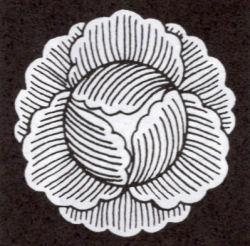 170327hiyoshi52.jpg