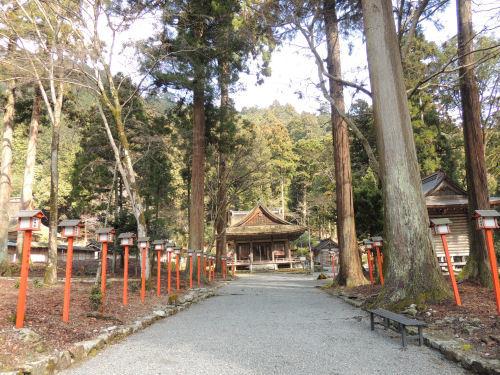 170327hiyoshi55.jpg