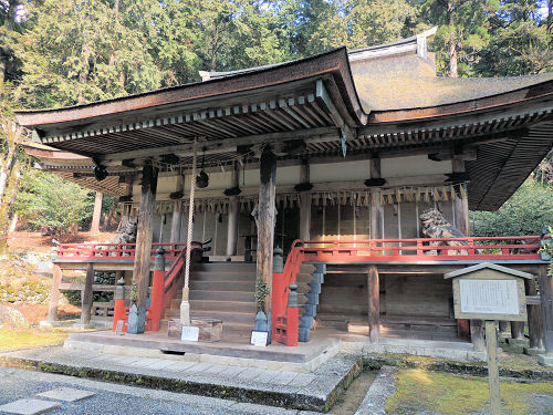 170327hiyoshi58.jpg