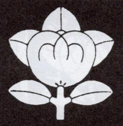 170327hiyoshi66.jpg