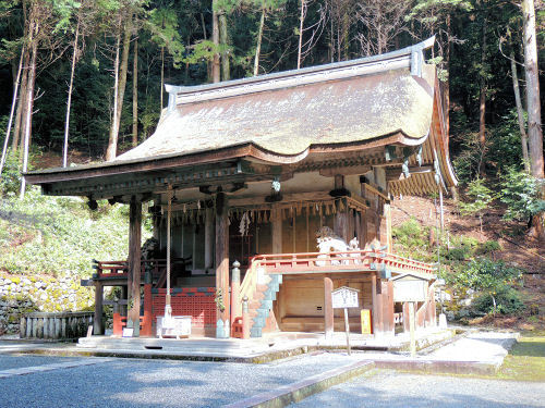 170329hiyoshi05.jpg