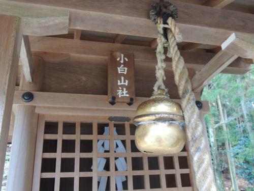 170329hiyoshi15.jpg