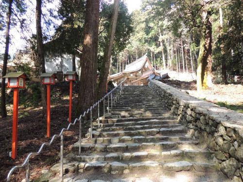 170329hiyoshi18.jpg
