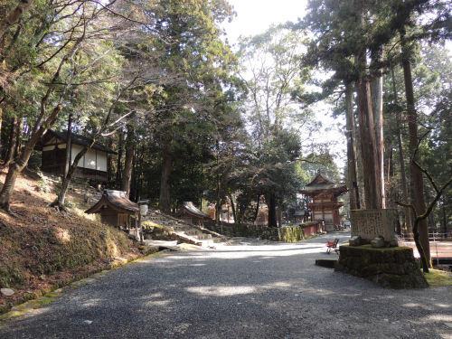 170329hiyoshi22.jpg