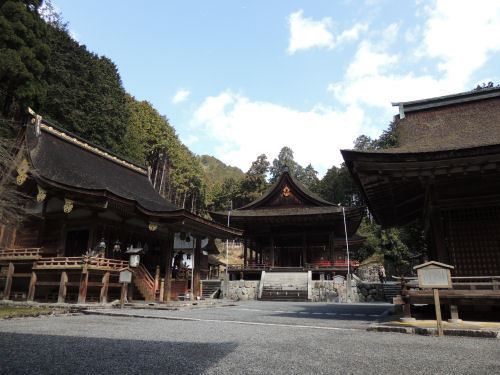170329hiyoshi28.jpg
