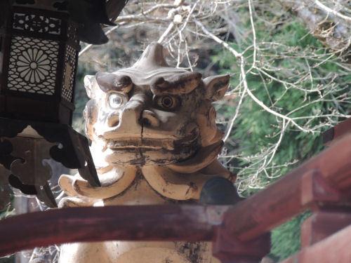 170329hiyoshi36.jpg