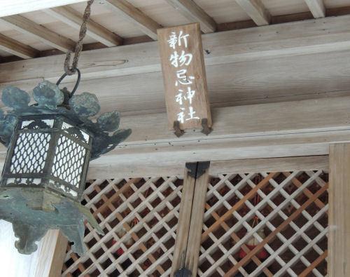 170329hiyoshi53.jpg