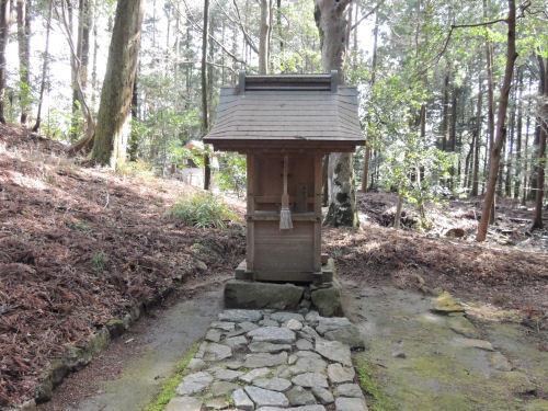170329hiyoshi63.jpg
