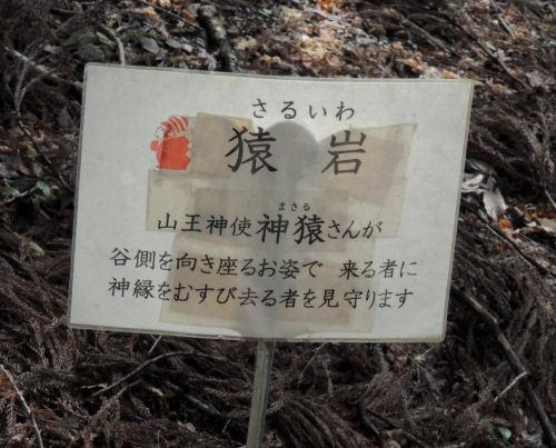 170329hiyoshi65.jpg
