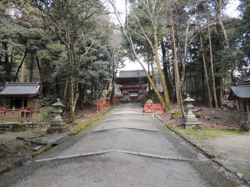 170329hiyoshi70.jpg