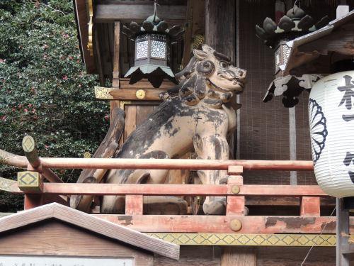 170330hiyoshi19.jpg