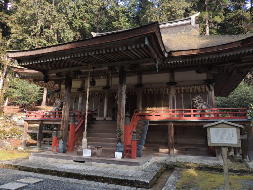 170330hiyoshi22.jpg
