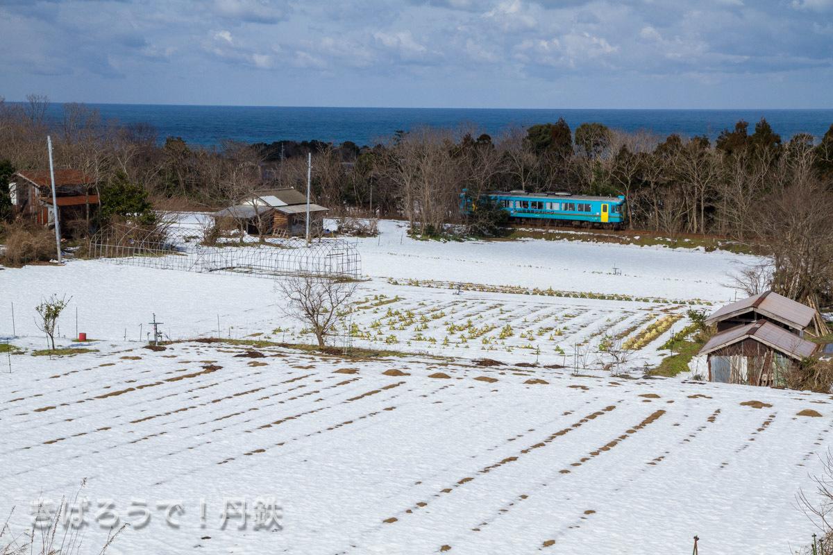 海をバックに残雪を走る。