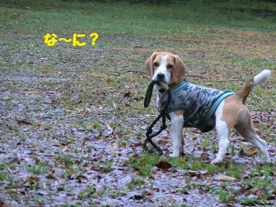霧雨 jiro な~に