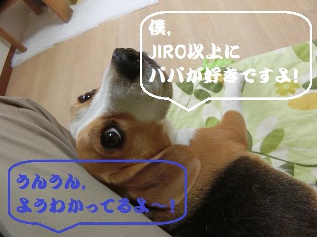 CIMG7228.jpg