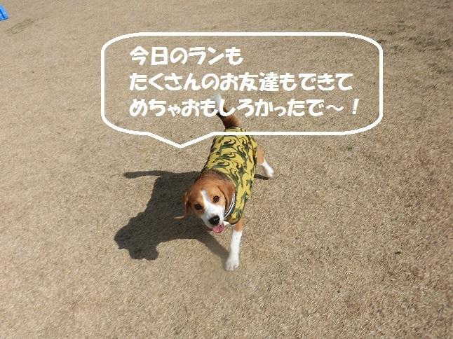 CIMG9555.jpg