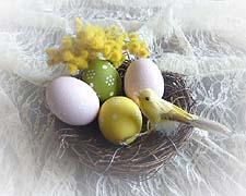 ペイントイ-スタ-エッグ鳥の巣