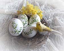 ペイントイ-スタ-エッグ鳥の巣1