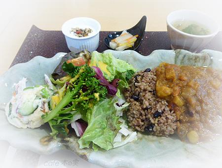 薬膳カレ-野菜いっぱい