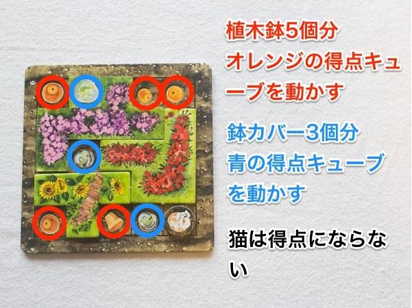 cottagegarden170316-06_600px.jpg
